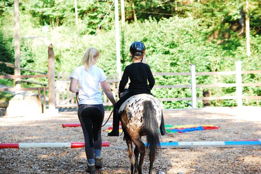 pferd outdoor kinder